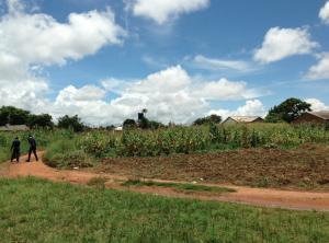 Kabulonga, Lusaka, Zambia