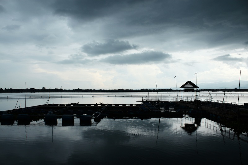 Kwan Phayao Before a Storm