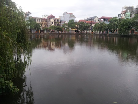 Southeast Asian pond